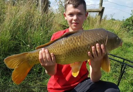 Common carp: Big Finned Common !