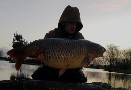 Common carp: New years new PB 34lb Common